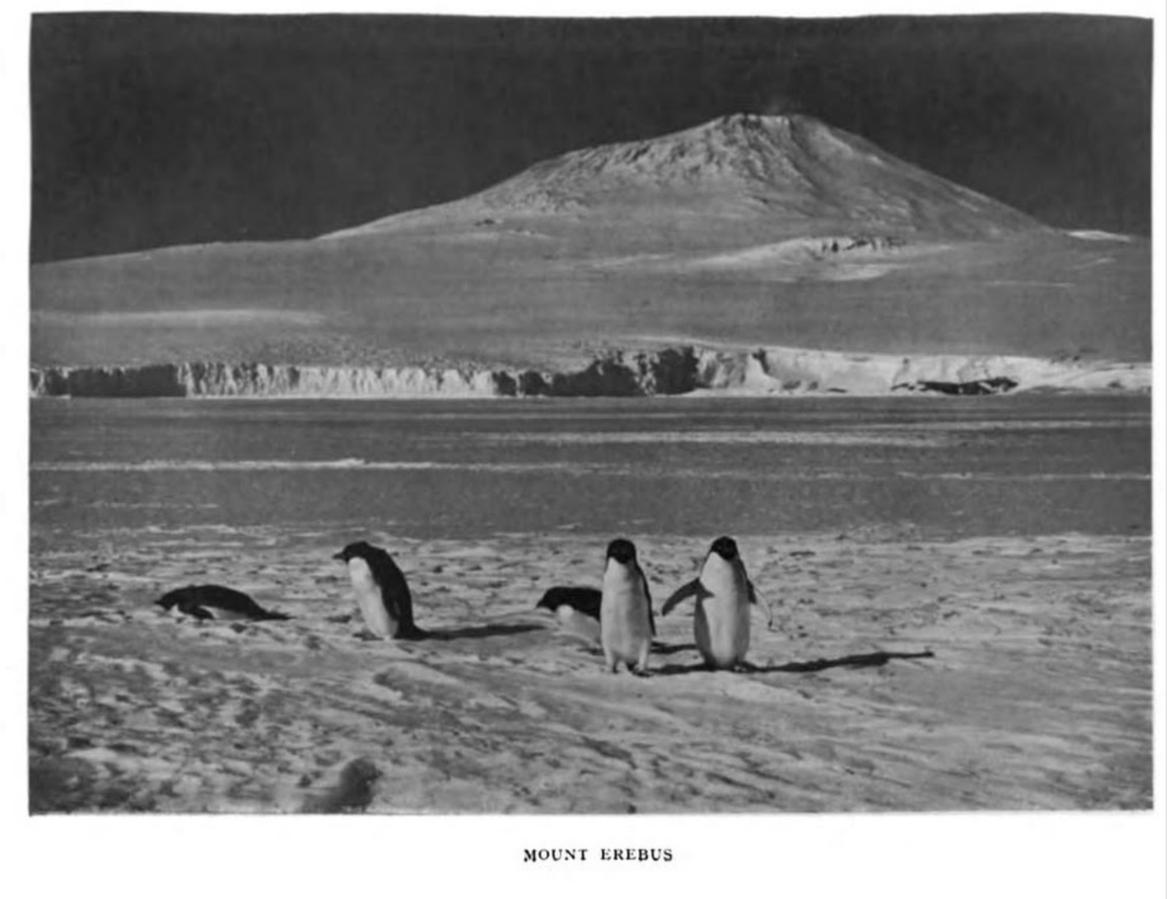 Erebus 1913